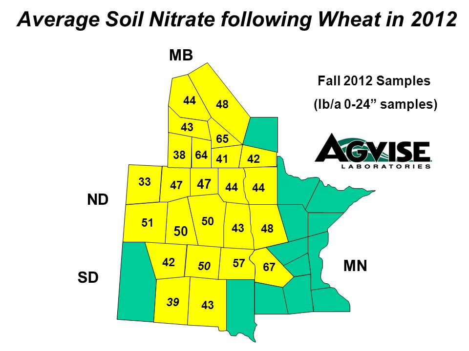 43 44 47 50 51 33 47 48 44 43 50 4142 64 Average Soil Nitrate following Wheat in 2012 Fall 2012 Samples (lb/a 0-24 samples) MB ND SD MN 42 39 38 65 44 48 43 67 57