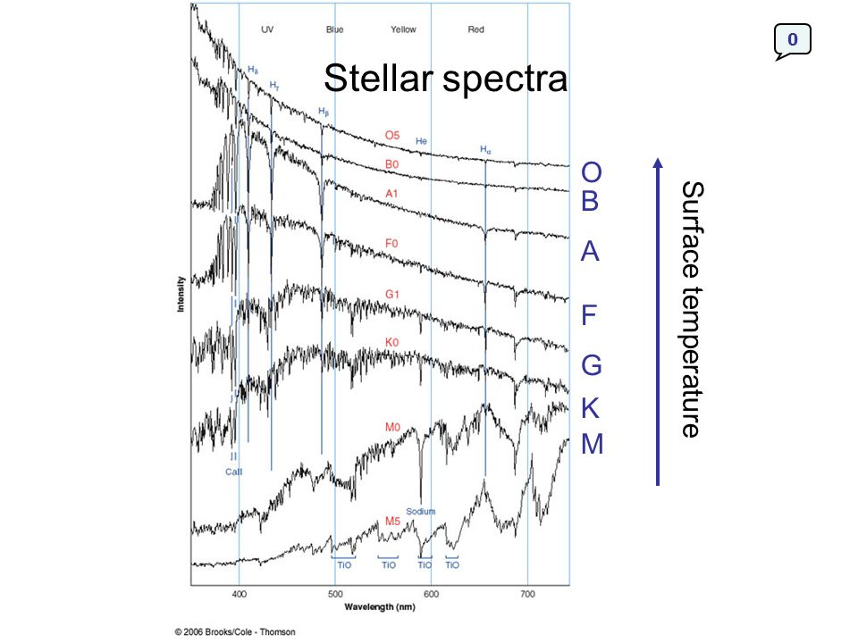 Interstellar Absorption Lines The interstellar medium produces absorption lines in the spectra of stars.