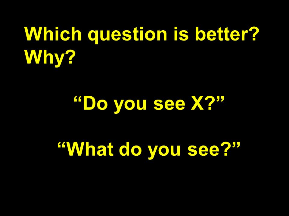 Which question is better? Why? Do you see X? What do you see?