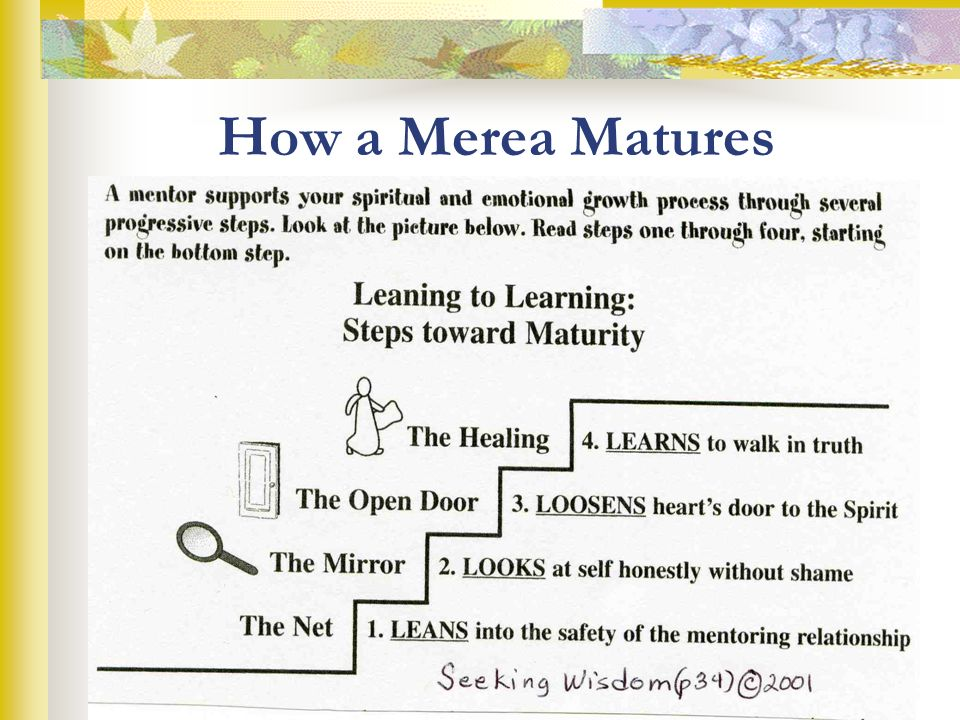 Leaning to Learning: Steps to Maturity The Healing: 4.