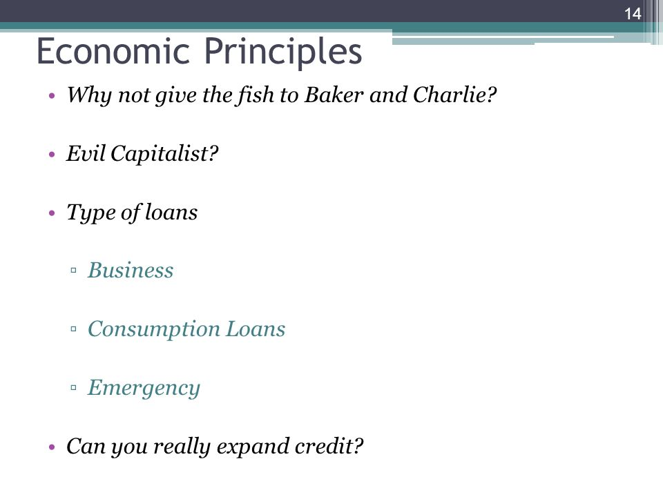 Why not give the fish to Baker and Charlie? Evil Capitalist? Type of loans Business Consumption Loans Emergency Can you really expand credit? 14 Econo
