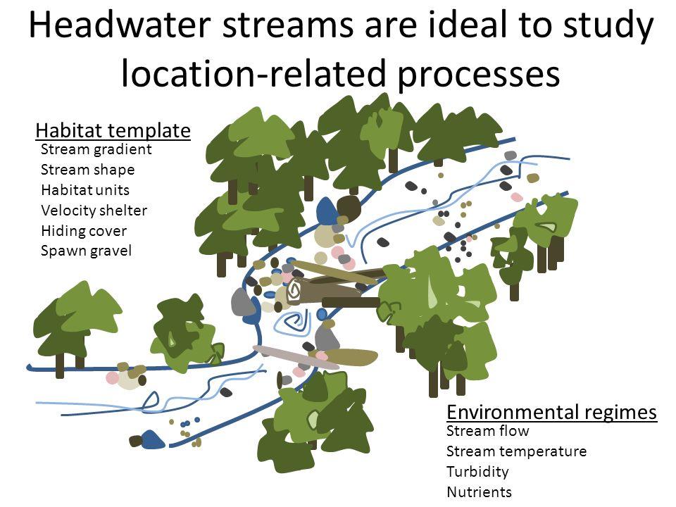 Stream flow Stream temperature Turbidity Nutrients Stream gradient Stream shape Habitat units Velocity shelter Hiding cover Spawn gravel Habitat templ
