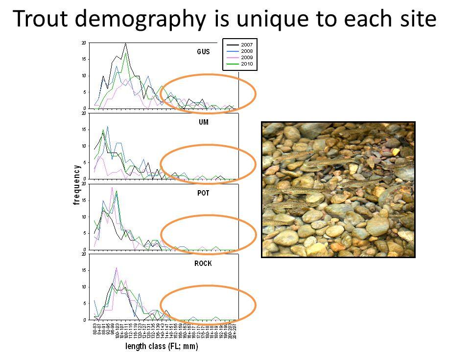 Trout demography is unique to each site