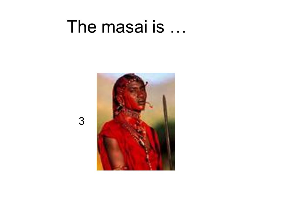 The masai is … 3