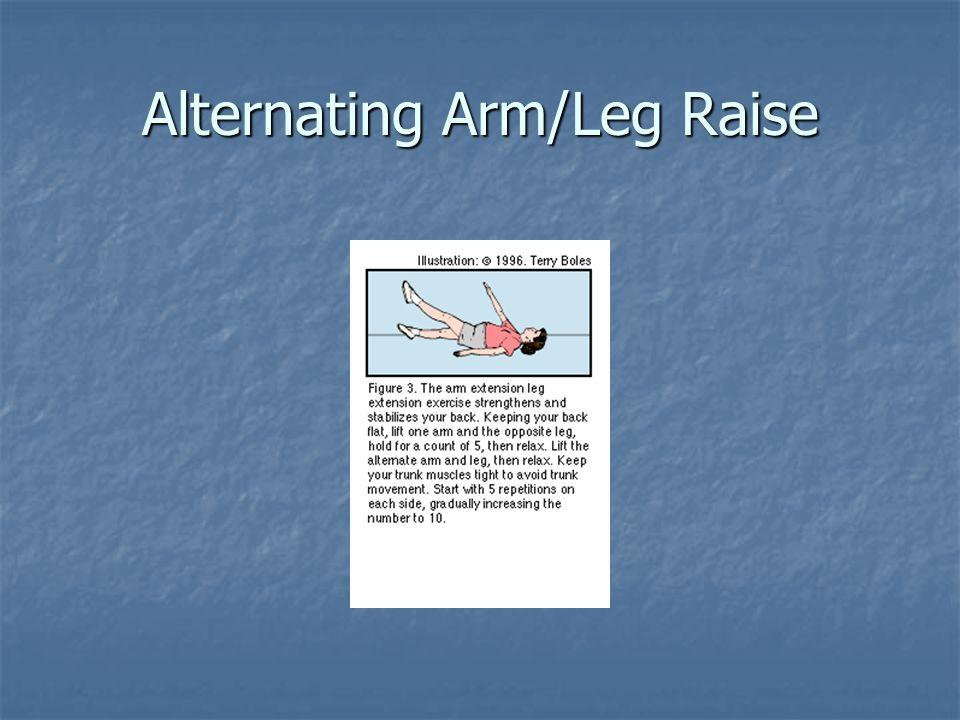 Alternating Arm/Leg Raise