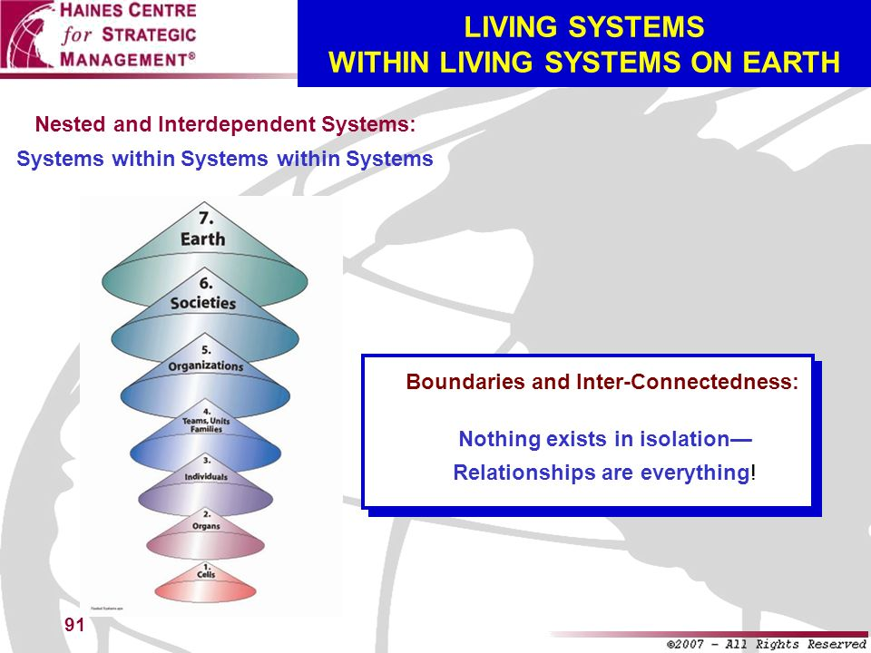 91 LIVING SYSTEMS WITHIN LIVING SYSTEMS ON EARTH Nested and Interdependent Systems: Systems within Systems within Systems Boundaries and Inter-Connect