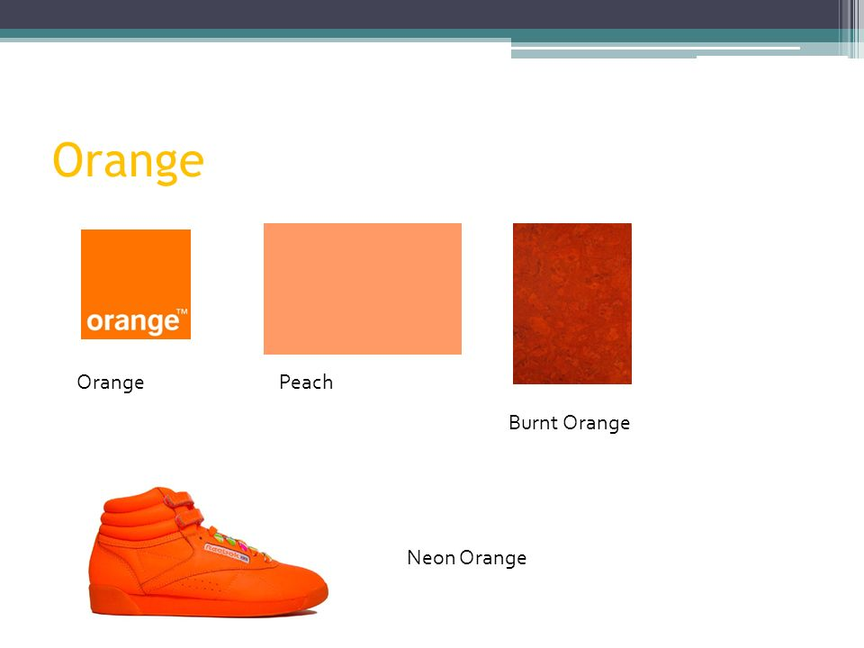 Orange Peach Burnt Orange Neon Orange