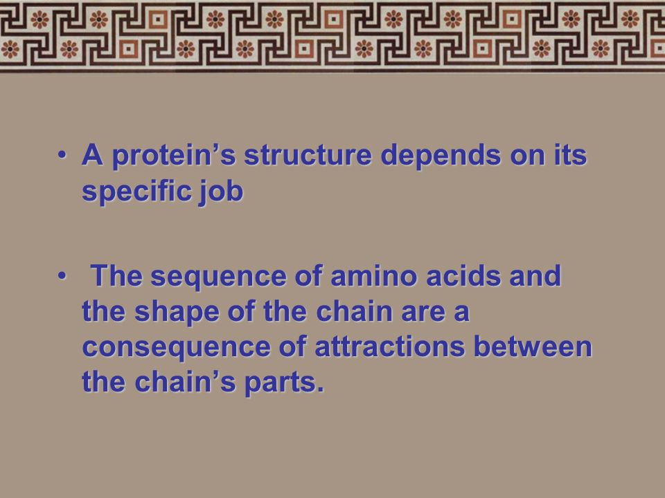 7 functions of proteins:7 functions of proteins: 1.Storage:albumin (egg white) 2.Transport: hemoglobin 3.Regulatory:hormones 4.Movement:muscles 5.Stru