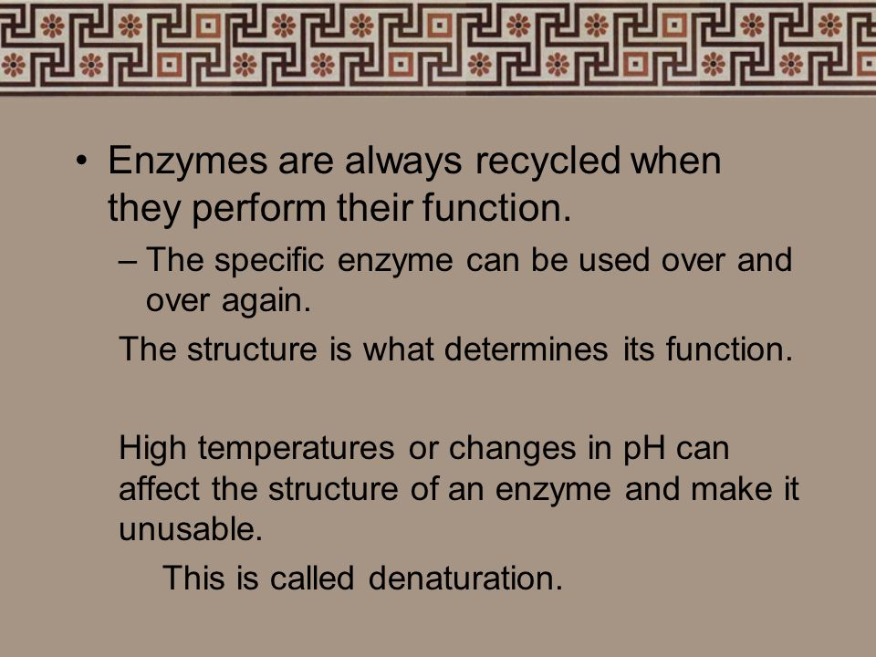 Enzymes Enzymes are proteins that help speed- up chemical reactions in the body. Enzymes are specific in their choosing –Each enzyme has only one reac