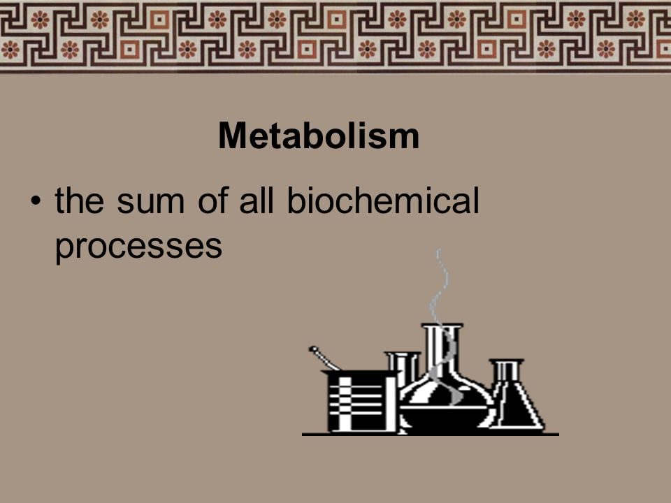 Most life processes are a series of chemical reactions influenced by environmental and genetic factors.