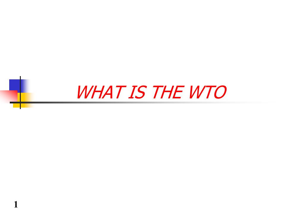 WHAT IS THE WTO 1