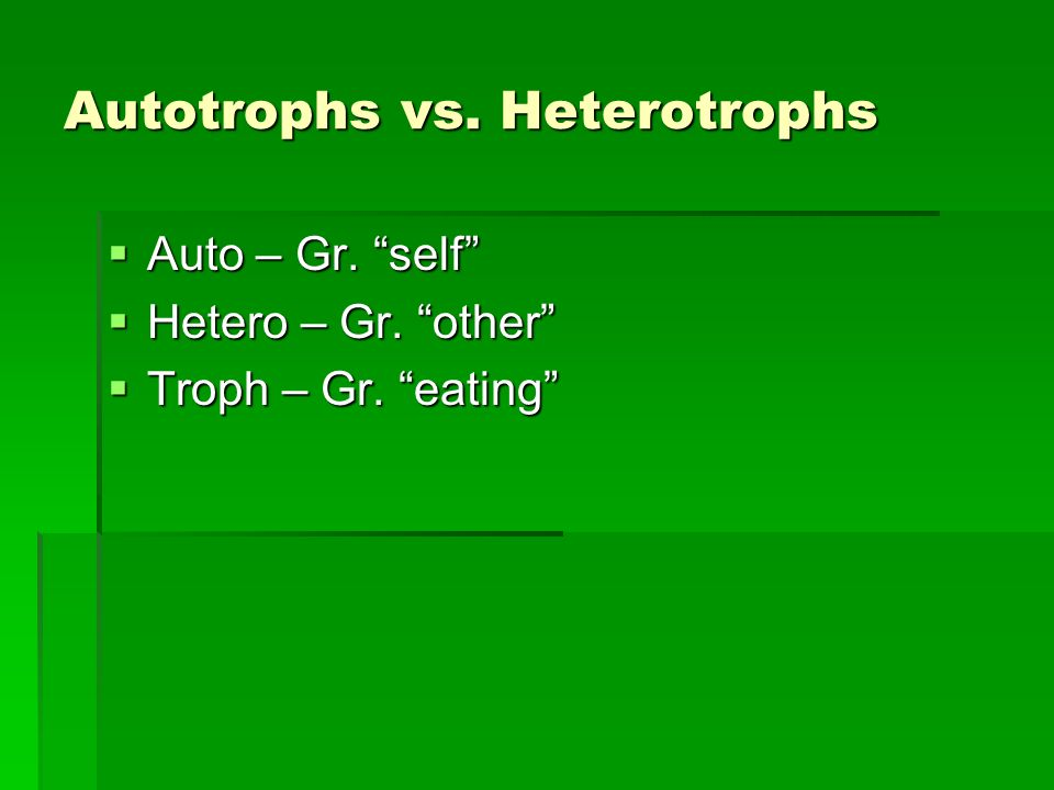 Autotrophs vs. Heterotrophs Auto – Gr. self Auto – Gr.