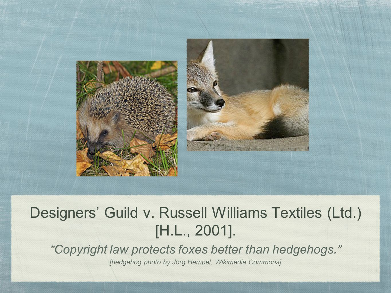 Designers Guild v. Russell Williams Textiles (Ltd.) [H.L., 2001]. Copyright law protects foxes better than hedgehogs. [hedgehog photo by Jörg Hempel,