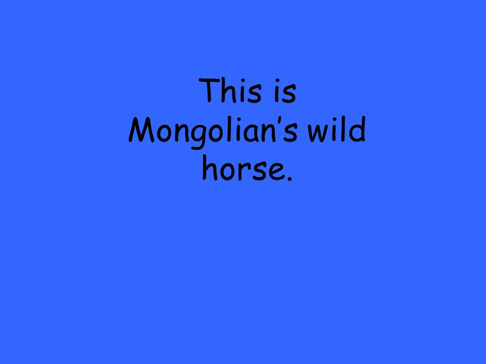 This is Mongolians wild horse.
