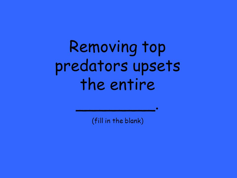 Removing top predators upsets the entire ________. (fill in the blank)