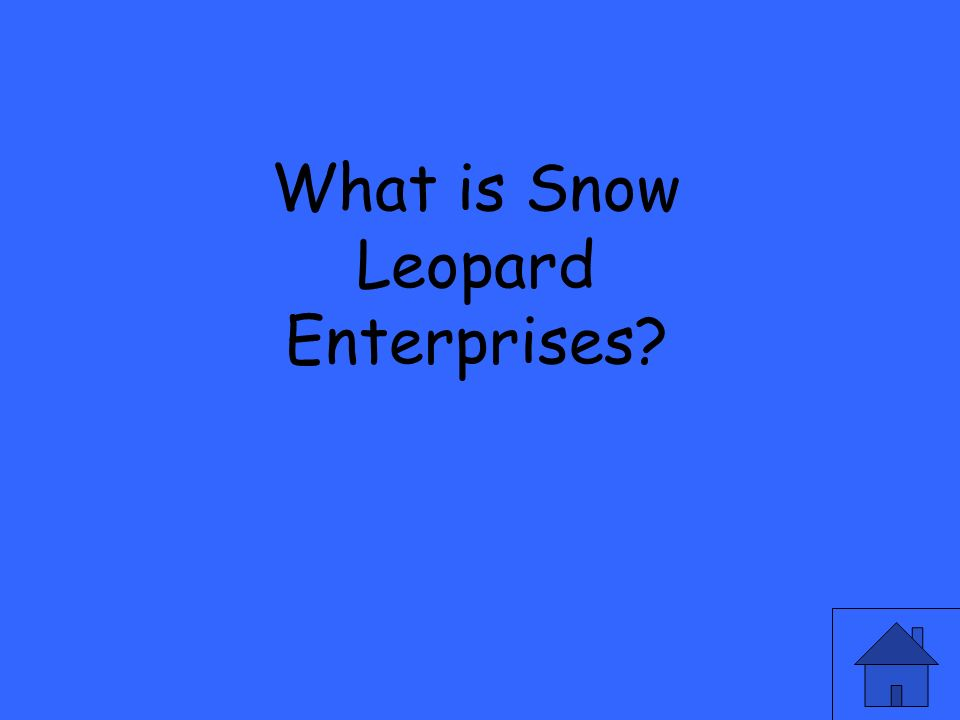 What is Snow Leopard Enterprises?