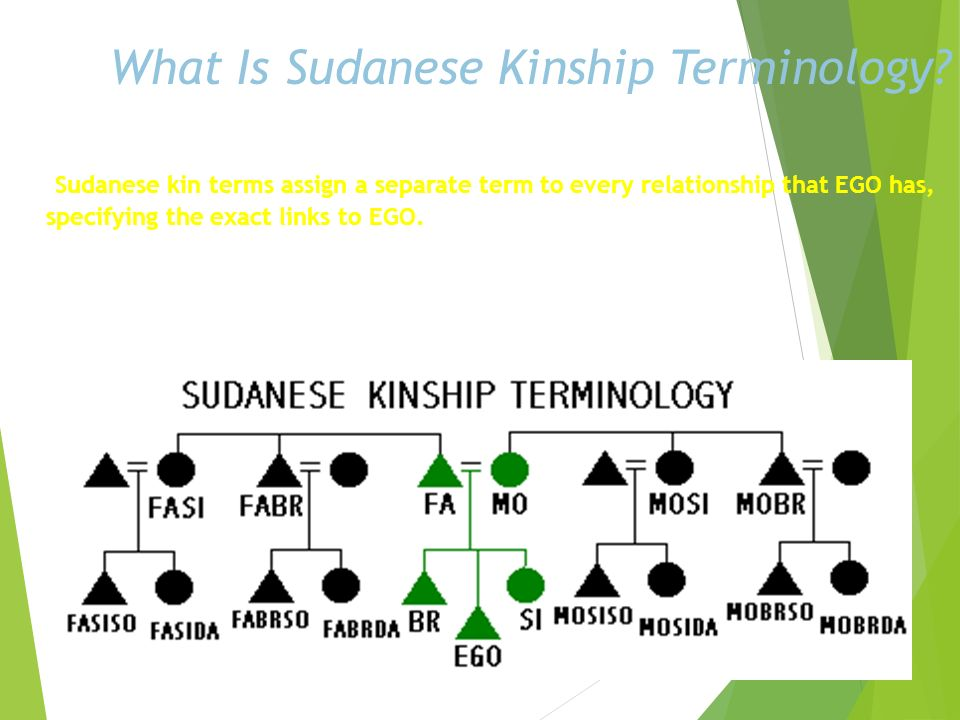 What Is Hawaiian Kinship Terminology? Hawaiian kin terms are quite simple. Every consanguineal relative in EGOs parents generation is a mother or a fa