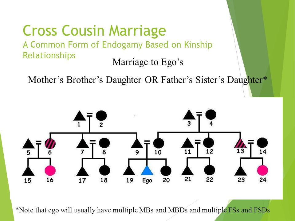 Parallel Cousin Marriage A Common Form of Endogamy Based on Kinship Relationships Marriage to Egos Mothers Sisters Daughter OR Fathers Brothers Daught