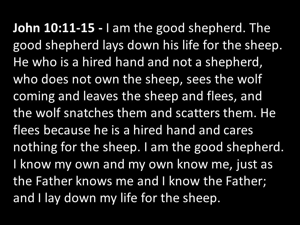 John 10:11-15 - I am the good shepherd. The good shepherd lays down his life for the sheep. He who is a hired hand and not a shepherd, who does not ow