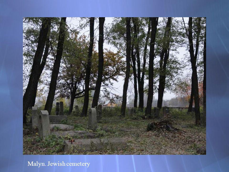 Malyn. Jewish cemetery