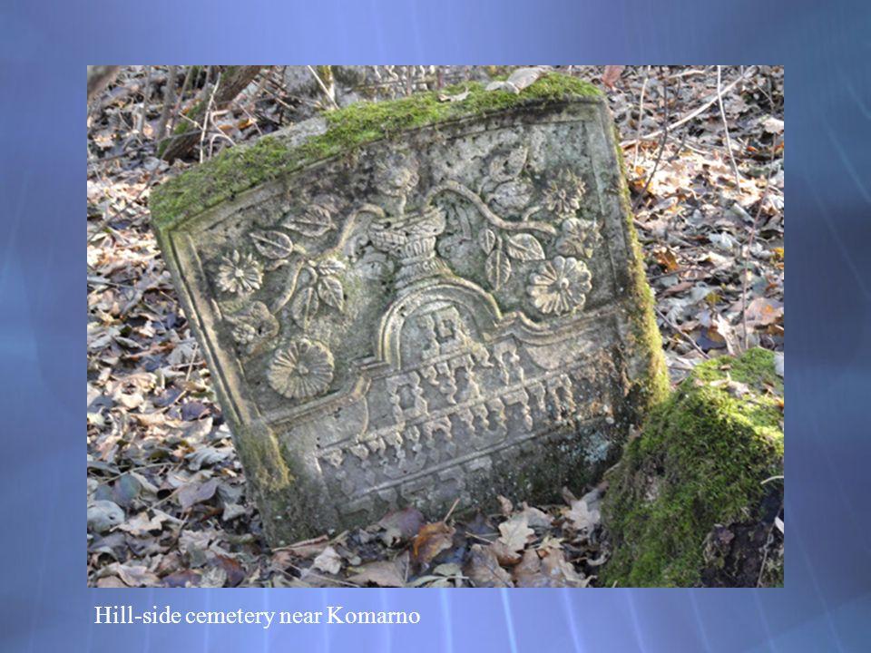 Hill-side cemetery near Komarno
