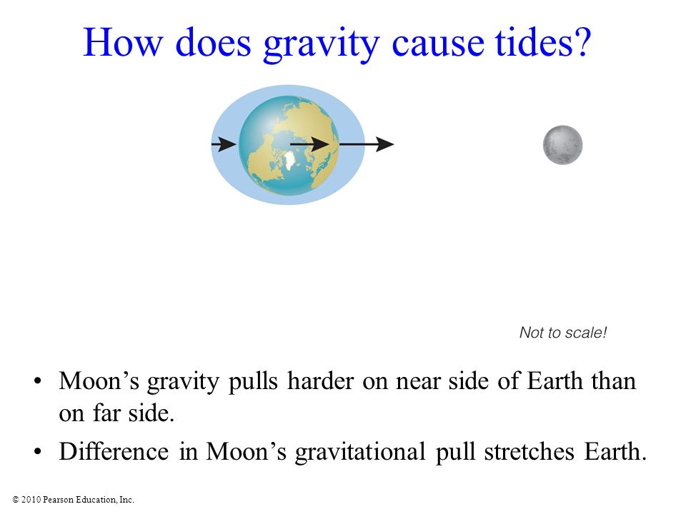 © 2010 Pearson Education, Inc. How does gravity cause tides? Moons gravity pulls harder on near side of Earth than on far side. Difference in Moons gr
