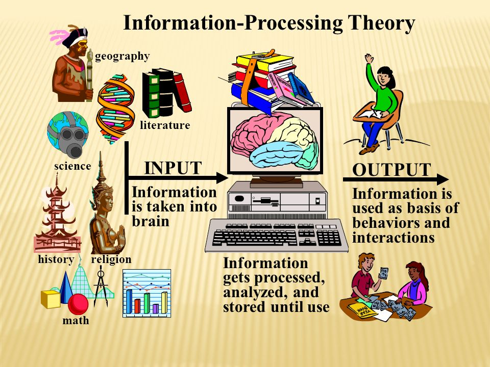 Information is taken into brain Information gets processed, analyzed, and stored until use OUTPUT INPUT Information is used as basis of behaviors and