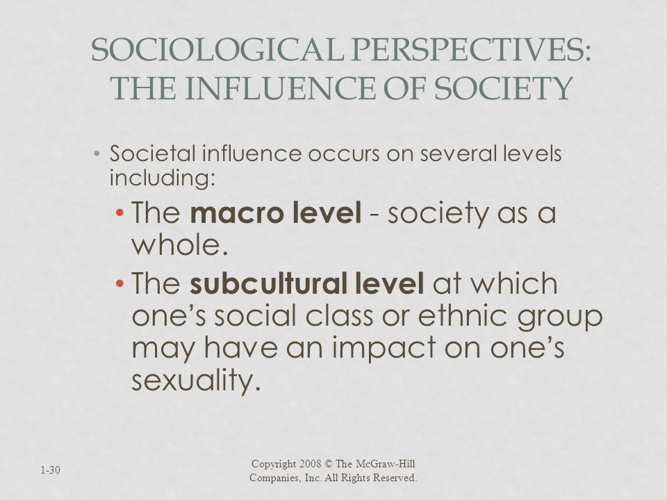 SOCIOLOGICAL PERSPECTIVES: THE INFLUENCE OF SOCIETY Societal influence occurs on several levels including: The macro level - society as a whole. The s
