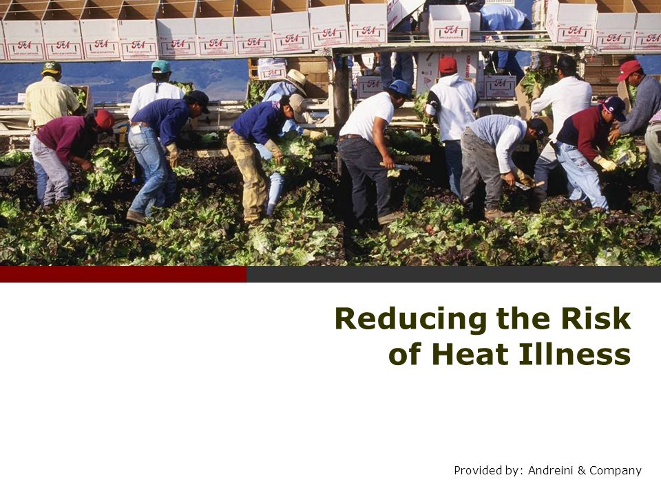 Reducing the Risk of Heat Illness Provided by: Andreini & Company