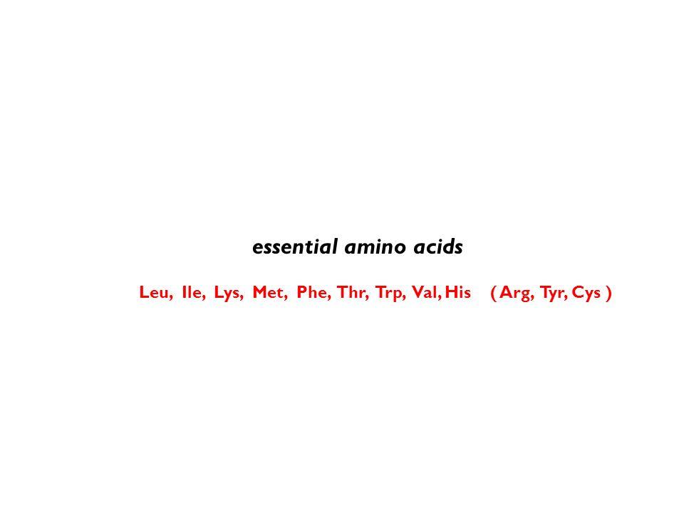 essential amino acids Leu, Ile, Lys, Met, Phe, Thr, Trp, Val, His ( Arg, Tyr, Cys )