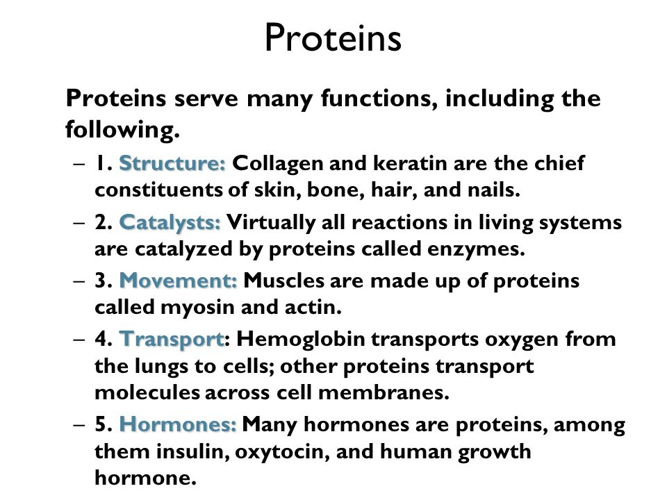 Proteins Proteins serve many functions, including the following. Structure: –1. Structure: Collagen and keratin are the chief constituents of skin, bo