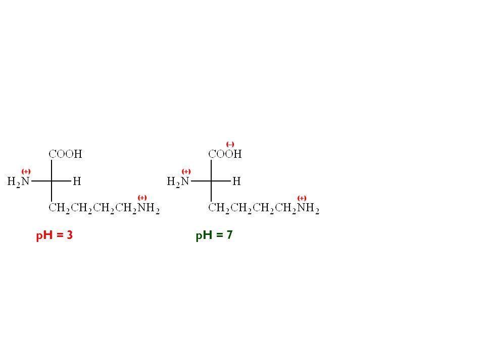 pH = 3 (+) pH = 7 (–) (+)