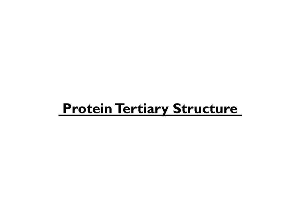 Protein Tertiary Structure