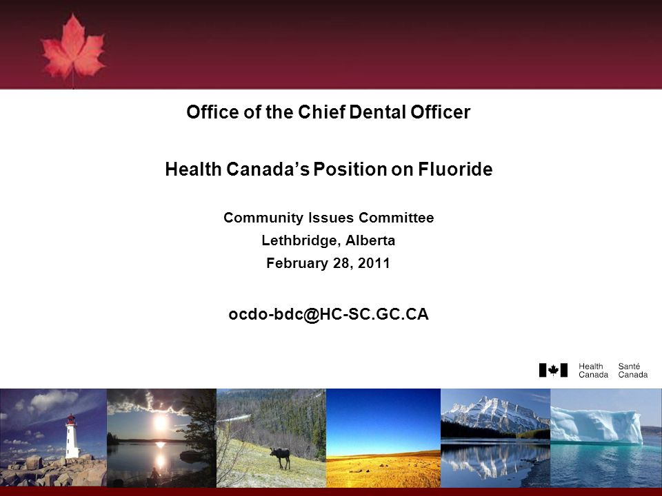 1 Office of the Chief Dental Officer Health Canadas Position on Fluoride Community Issues Committee Lethbridge, Alberta February 28, 2011 ocdo-bdc@HC-