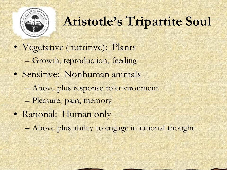 Aristotles Tripartite Soul Vegetative (nutritive): Plants –Growth, reproduction, feeding Sensitive: Nonhuman animals –Above plus response to environme