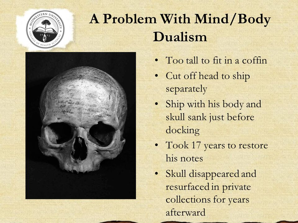 A Problem With Mind/Body Dualism Too tall to fit in a coffin Cut off head to ship separately Ship with his body and skull sank just before docking Too