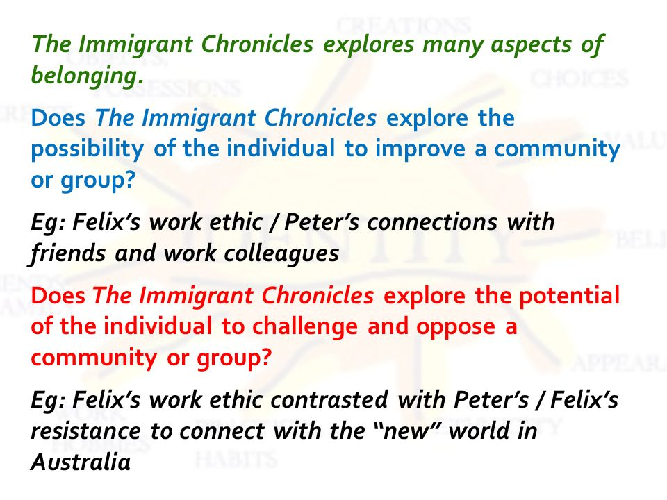 The Immigrant Chronicles explores many aspects of belonging.