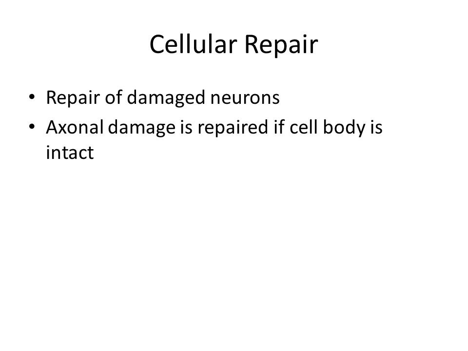 Cellular Repair Repair of damaged neurons Axonal damage is repaired if cell body is intact