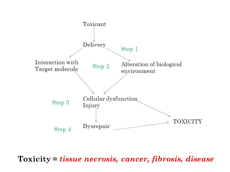 Toxicant Delivery Interaction with Target molecule Alteration of biological environment Cellular dysfunction Injury Dysrepair TOXICITY Step 1 Step 2 S