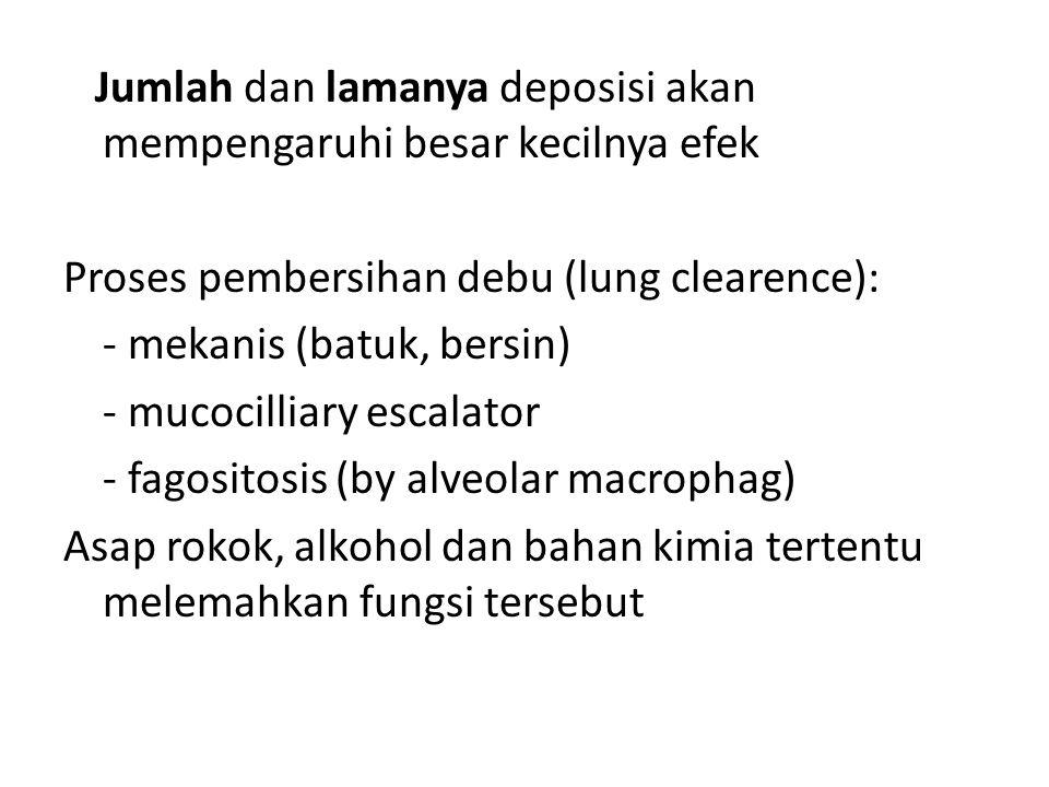 Jumlah dan lamanya deposisi akan mempengaruhi besar kecilnya efek Proses pembersihan debu (lung clearence): - mekanis (batuk, bersin) - mucocilliary e