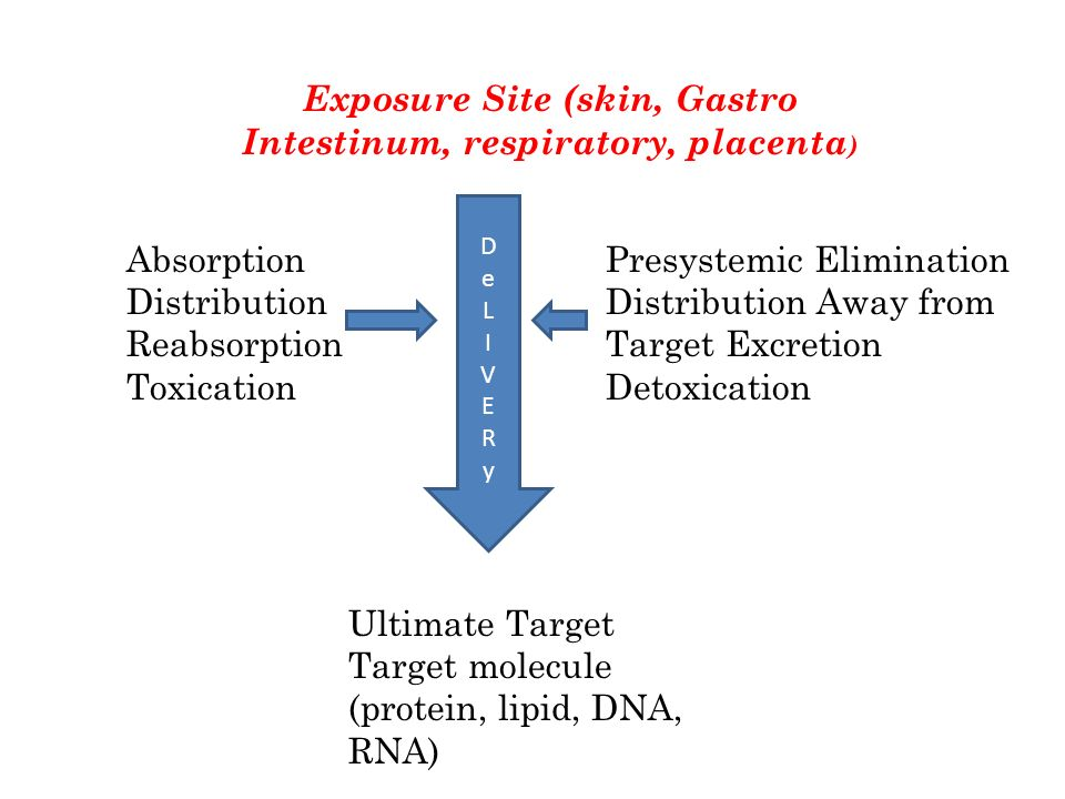 Exposure Site (skin, Gastro Intestinum, respiratory, placenta ) Ultimate Target Target molecule (protein, lipid, DNA, RNA) DeLIVERyDeLIVERy Absorption