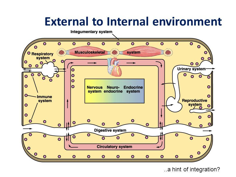 External to Internal environment..a hint of integration?
