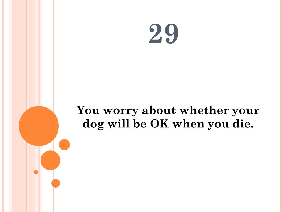 You worry about whether your dog will be OK when you die. 29