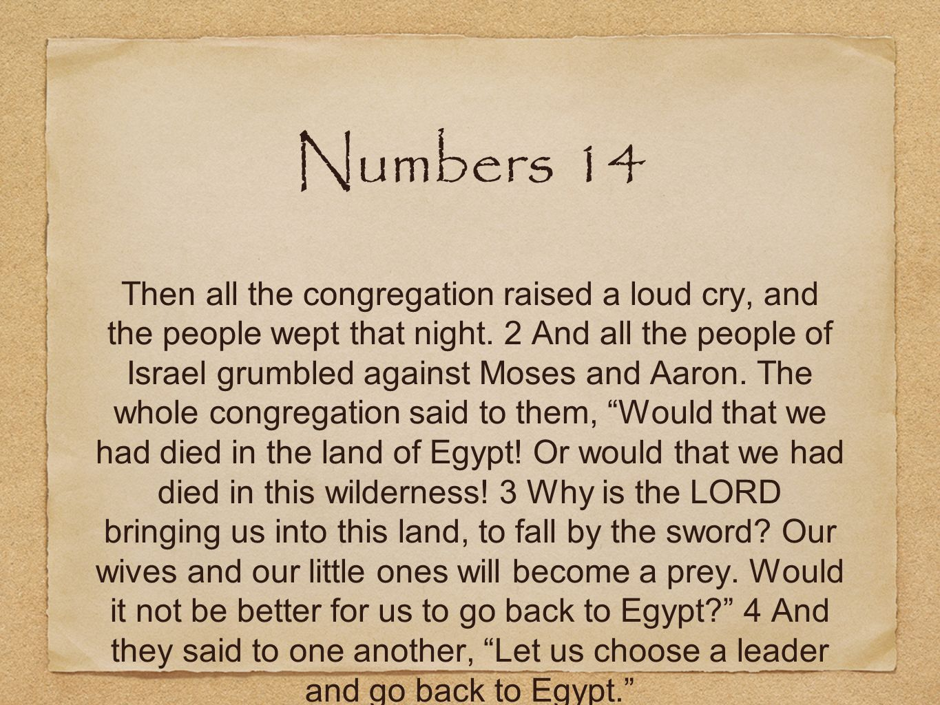Numbers 14 Then all the congregation raised a loud cry, and the people wept that night. 2 And all the people of Israel grumbled against Moses and Aaro