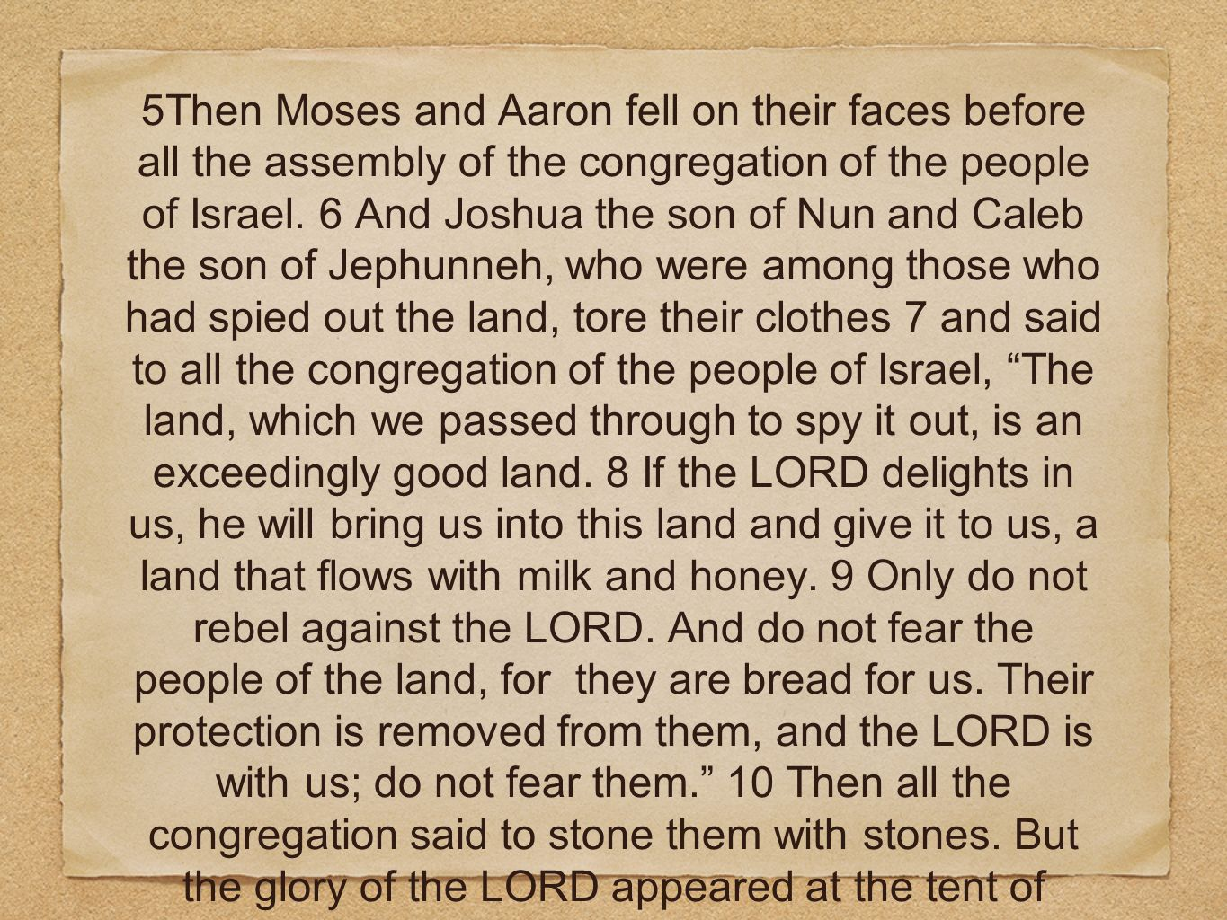 5Then Moses and Aaron fell on their faces before all the assembly of the congregation of the people of Israel. 6 And Joshua the son of Nun and Caleb t
