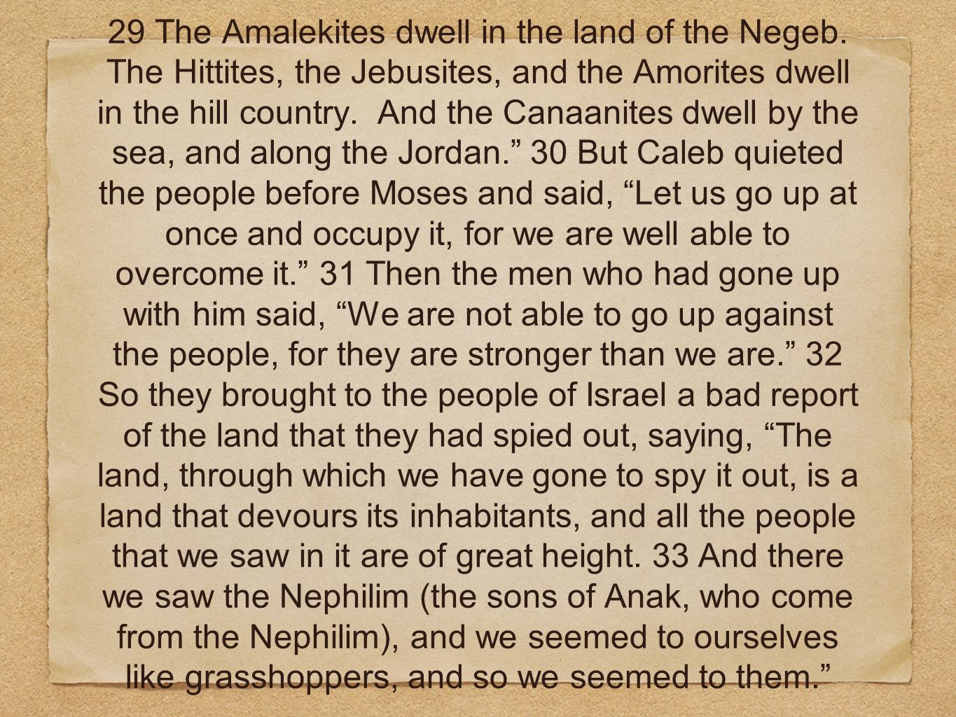 29 The Amalekites dwell in the land of the Negeb. The Hittites, the Jebusites, and the Amorites dwell in the hill country. And the Canaanites dwell by