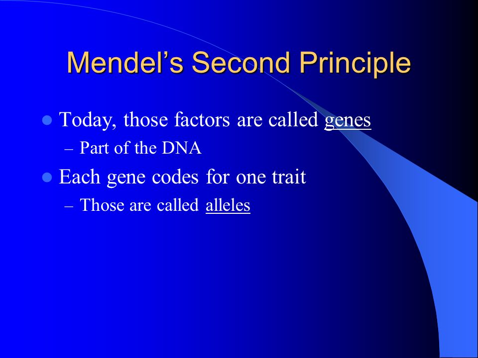 Mendels Second Principle Today, those factors are called genes – Part of the DNA Each gene codes for one trait – Those are called alleles