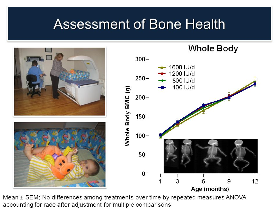 Assessment of Bone Health Mean ± SEM; No differences among treatments over time by repeated measures ANOVA accounting for race after adjustment for mu