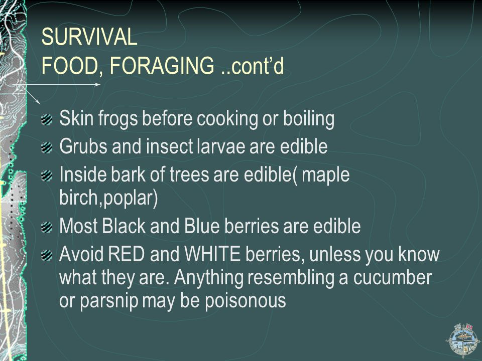 SURVIVAL FOOD…contd GENERAL RULES OF FORAGING: When short on water,eat as many carbs as possible ALL fur bearing animals are edible All grass seeds ar