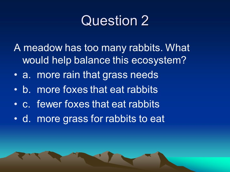 Question 2 A meadow has too many rabbits. What would help balance this ecosystem? a.more rain that grass needs b.more foxes that eat rabbits c.fewer f